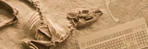 Skeleton next to keyboard